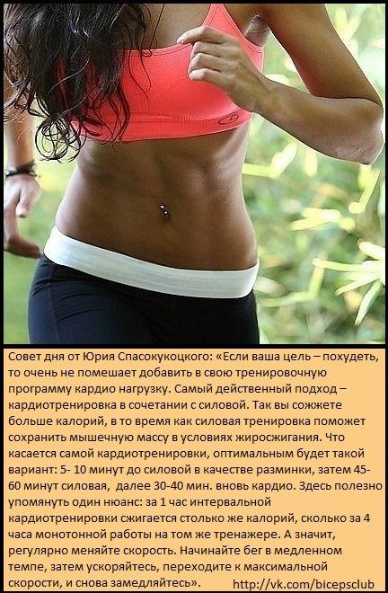 Кардиотренировки как похудеть