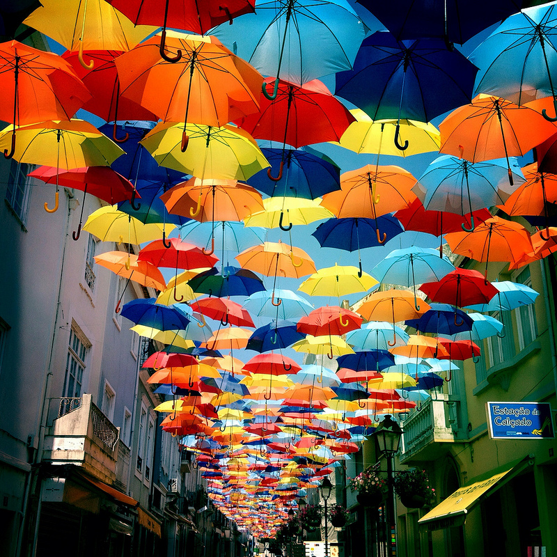 Amazing umbrellas