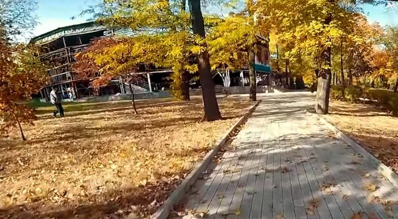 Дорожки парка им. Щербакова