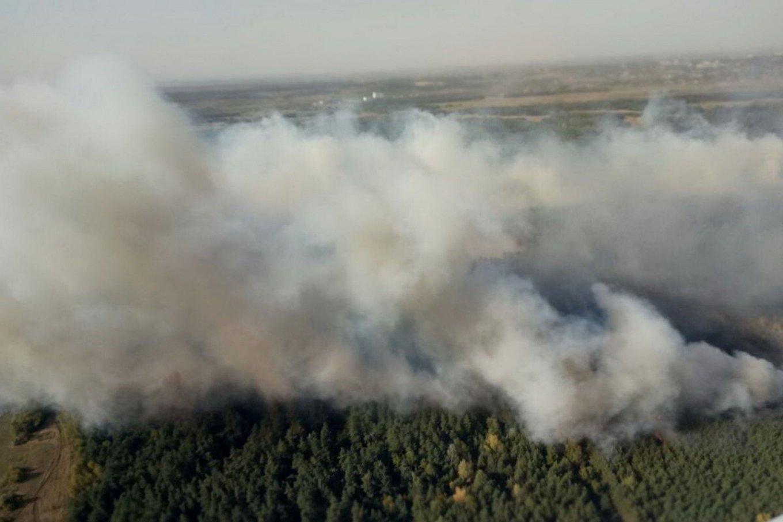 Лесной пожар наХарьковщине распространился на70 га, ктушению привлечена авиация