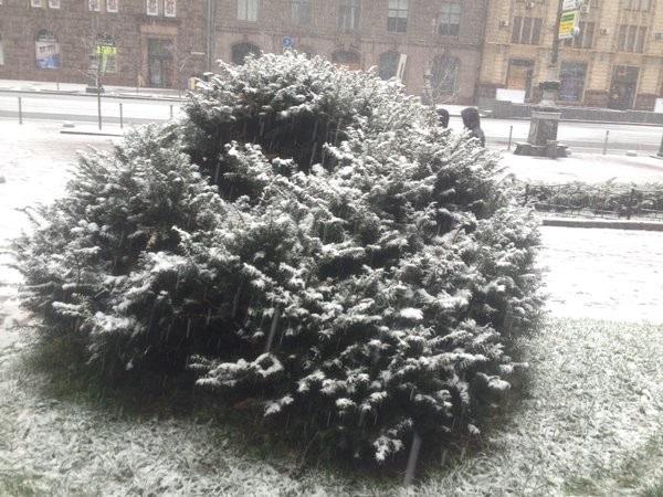 Сегодня под Киевом выпал 1-ый снег