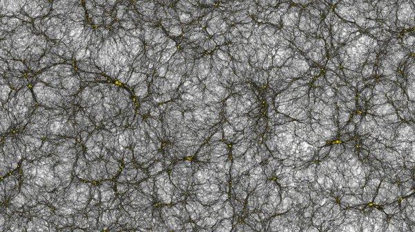Ученые увидели наибольшую  симуляцию рождения иразвития Вселенной