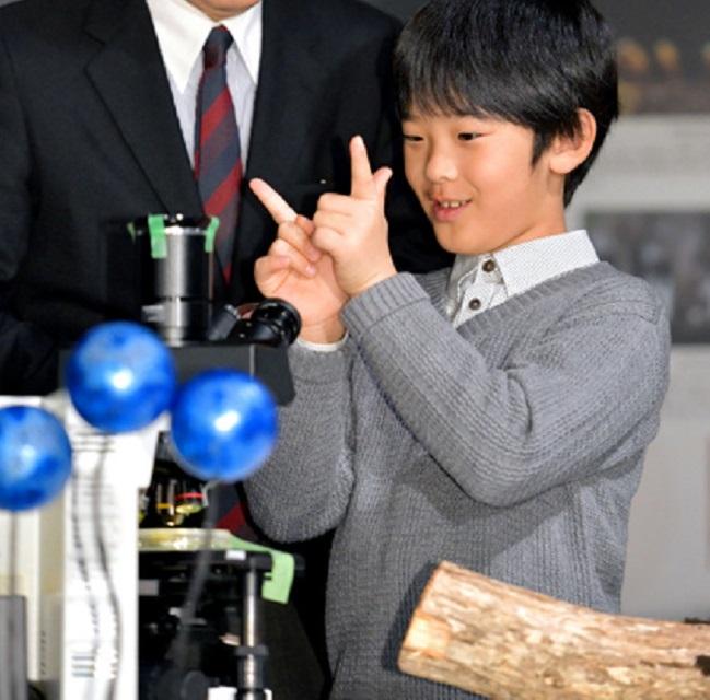 Принц Хисахито из Акисино (Япония)