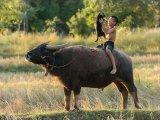 Таиланд, фотография Саравута Интарубы