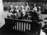 Єврейські малюки в гетто, Лешнів (Львівщина), 1942 – 1943 роки / Фото: memory.gov.ua