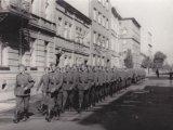 """Батальйон """"Нахтігаль"""" вступає до Львова, 1941 рік / Фото: memory.gov.ua"""