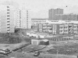 Троещина, 1985 год (фото: my-kiev.com)