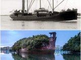 Покинутый корабль «Плавающий лес» (Австралия)