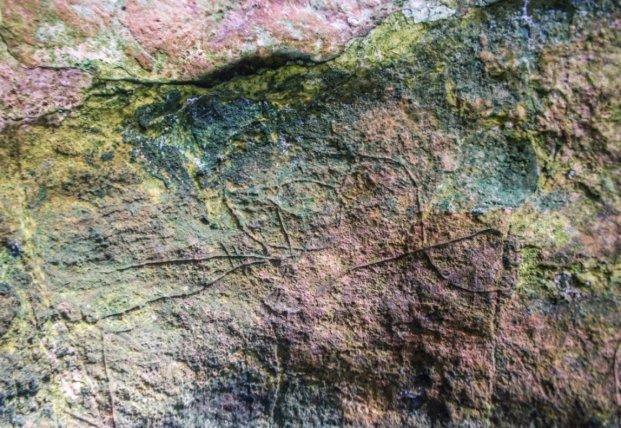 Археологи обнаружили в пещере изображения эпохи палеолита