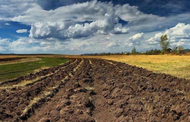 Мораторий на землю выгоден России, коррупционеру и олигарху