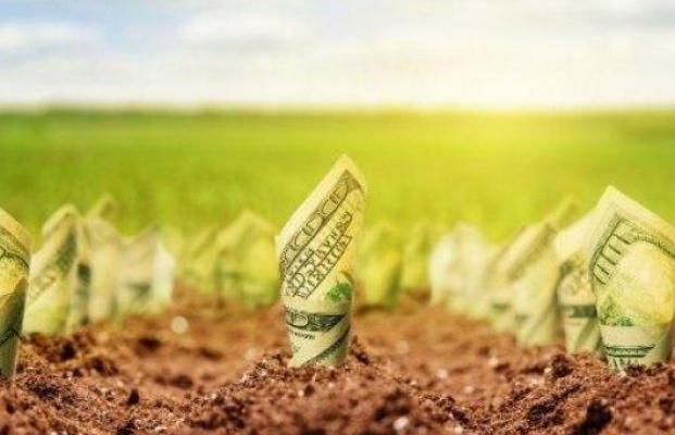 Сколько стоит глупость или расплата за отсутствие рынка земли
